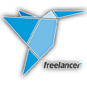 Self Education It freelancer