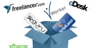 selfeducationit Freelance Marketplace
